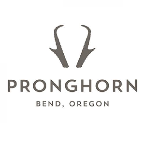 Pronghorn Logo Home